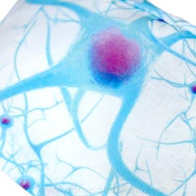 Ampliación Gorros Quirofano Neuronas Blanco - 421g
